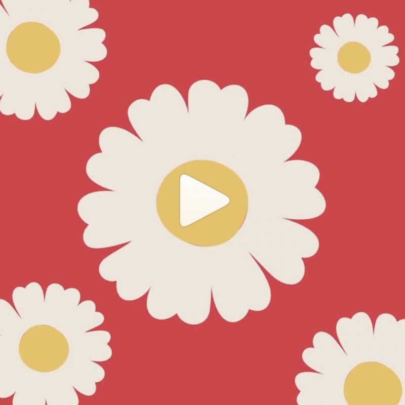 maxomorra animations Jenny tam thai creative communication